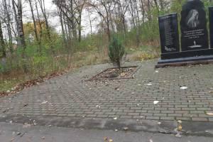 В Клинцах заметили грязь и мусор на воинском мемориале