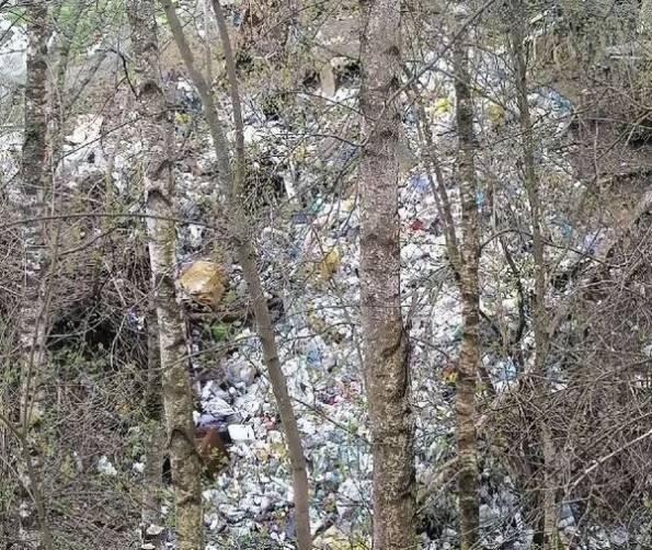 В брянской деревне Антоновка сняли на фото мусорный апокалипсис
