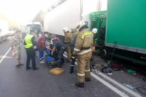 Под Брянском столкнулись два грузовика: ранен водитель