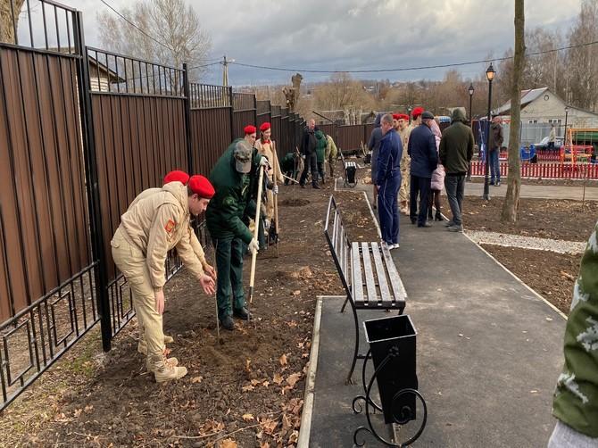 В Супонево высадили аллею из 50 деревьев