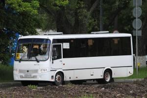 В Брянске скорректировали расписание по будням автобуса №8