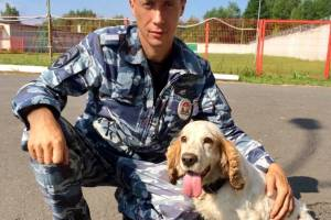 В Брянске полицейский спаниель Микки помог найти схрон боеприпасов