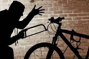 Брянец за лето угнал 19 велосипедов из подъездов
