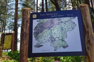 Посетители заповедника «Брянский лес» могут попасть в прошлое