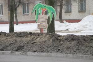 Брянские пальмы утонули в грязи вместе со всем городом