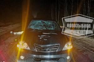 На брянской трассе водитель Kia насмерть сбил пешехода