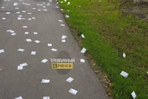 В Брянске рекламные листовки разбросали по тротуару