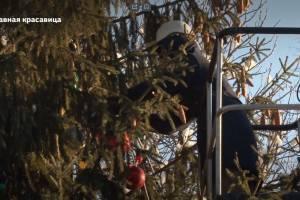 В Брянске сняли на видео украшение главной новогодней елки