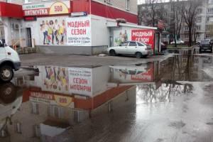Брянцы из-за лужи пожалуются на чиновников президенту Путину