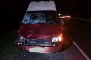 Впавший в кому после наезда автомобиля 23-летний брянец умер в больнице