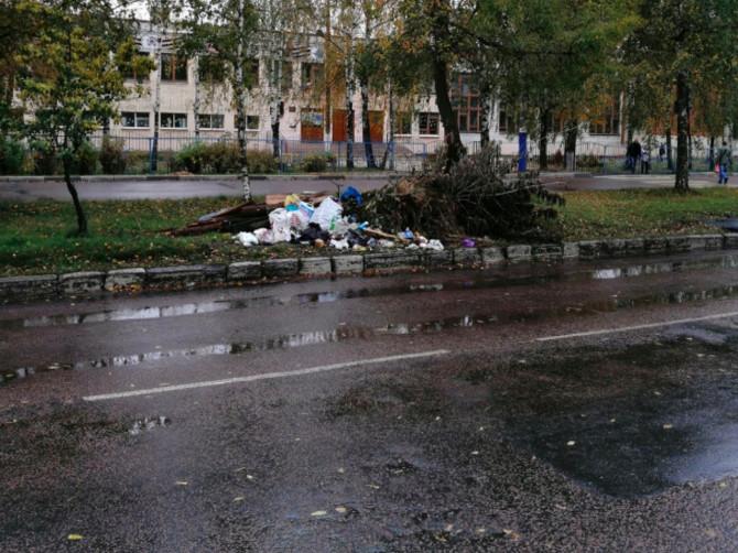 В Брянске заметили огромную свалку напротив школы №11