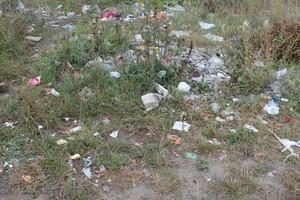 ОНФ нашел в Брянске «непонятное безобразие» и горы мусора