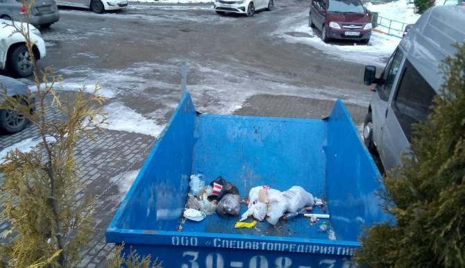 В Брянске объяснили мусорную свалку на Самолете
