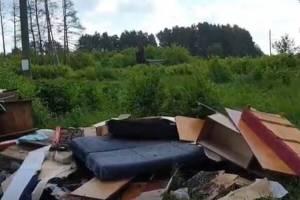 Жители брянского поселка Белые Берега «забросали» кладбище старыми диванами