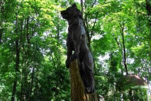 Брянцев позвали в «Деревянную сказку»