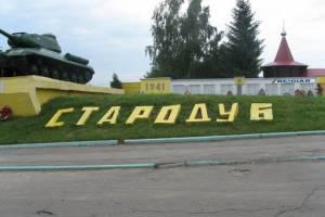 Город Стародуб объединят с районом в муниципальный округ