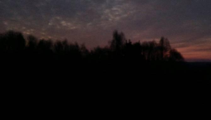 Под Брянском в военном лесничестве загорелась трава