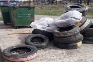 Брянским автомобилистам предложили бесплатно сдать старые шины