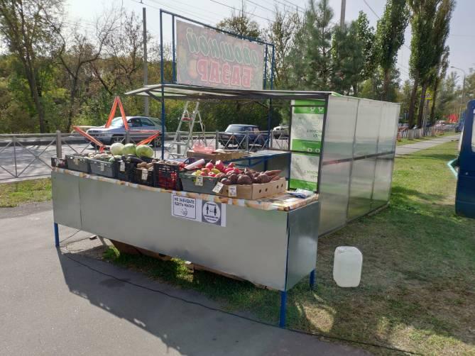 В Брянске на въезде в Володарку открылся овощной базар
