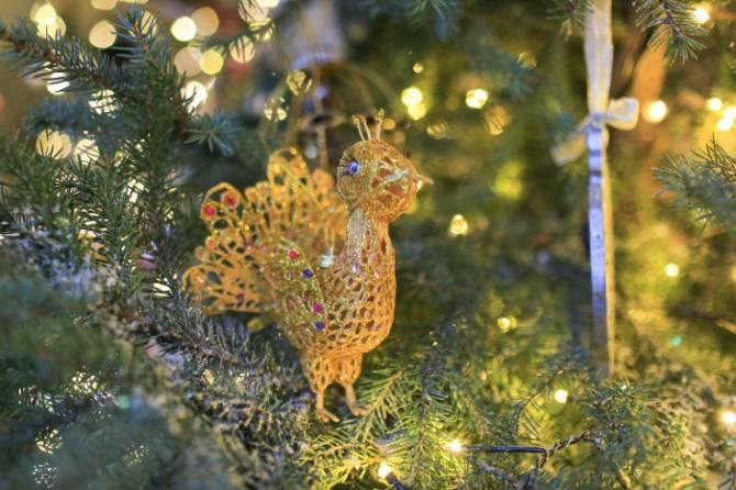 Шикарный павлин клинцовской школьницы украсит елку в Эрмитаже