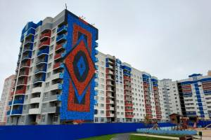 В Брянске на фасаде многоэтажки появился первый мурал