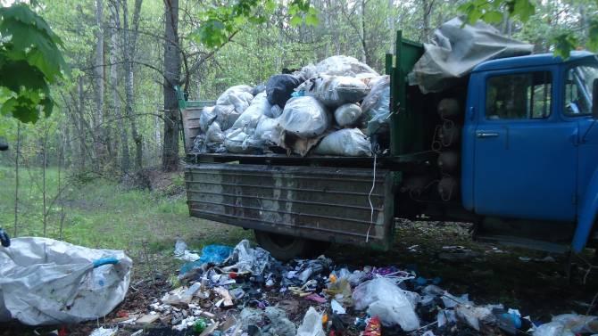 В Брянске рассказали о приятной лесной неожиданности
