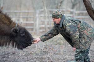 Заповедник «Брянский лес» пригласил волонтеров на уборку кордона