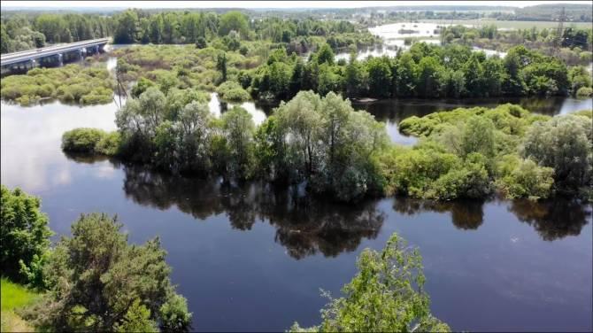 В Жуковке Десна затопит пешеходный мост в Вышковичи