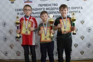 Брянские дети завоевали 35 медалей на турнире по шахматам