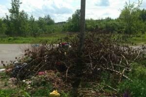 Жители Клинцов жалуются на свалку на кладбище