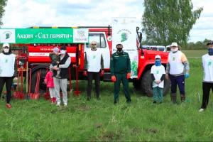 Ансамбль «Бабкины Внуки» высадил 75 саженцев у села Кокино