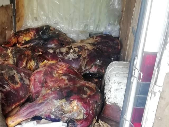 В Брянской области уничтожили 220 кг сомнительной говядины