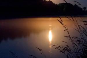 Ночью 22 июля в Брянской области похолодает до +10