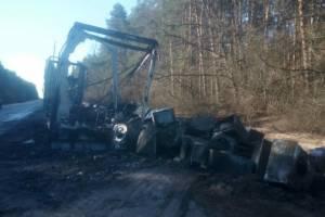 На трассе в Брянской области дотла сгорела фура