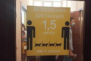 Брянские чиновники объяснили дефицит «ЭпиВакКороны» и «КовиВака»