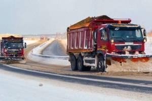 В Брянской области на федеральные трассы за сутки высыпали 1567 тонн песка и соли