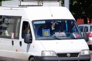 Брянцы требуют пустить рейсовый автобус до Добруни