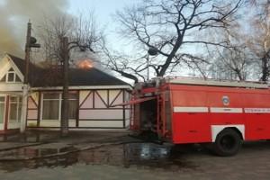 В Майском парке Брянска потушили пожар