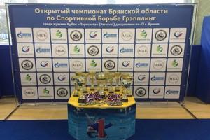 В Брянске прошел Кубок Пересвета по спортивной борьбе Грэпплинг