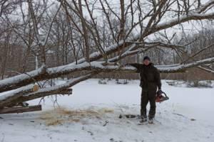 Брянские активисты приступили к расчистке русла реки Снежеть