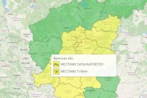 В Брянской области из-за тумана продлили желтый уровень опасности