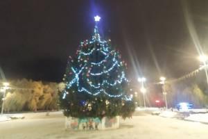 В Брянске на Кургане Бессмертия украсили праздничную ель