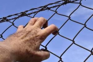 В Брянской области уголовники совершили 2000 преступлений