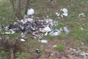 В селе Могилевцы загадили мусором территорию у озера