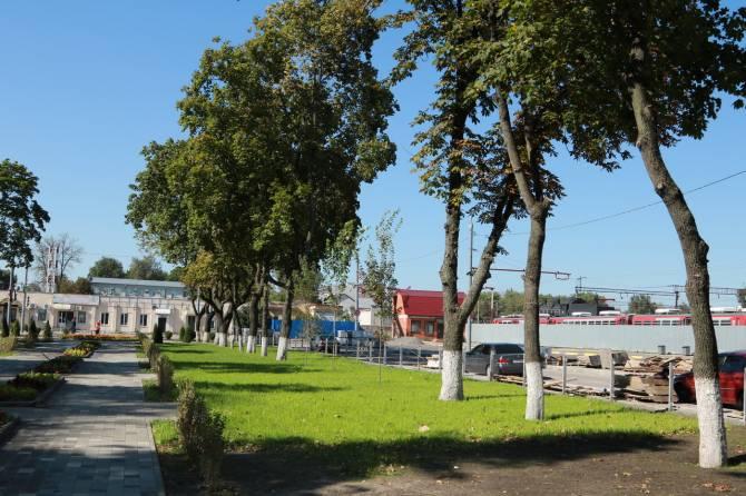 В Брянске у железнодорожного вокзала высадили 25 деревьев