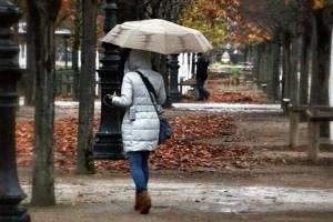 На Брянщине 18 октября ожидается дождь и сильный ветер