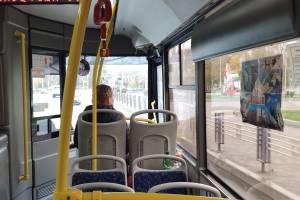 Брянцы пожаловались на исчезнувшие льготные автобусы в Бытошь