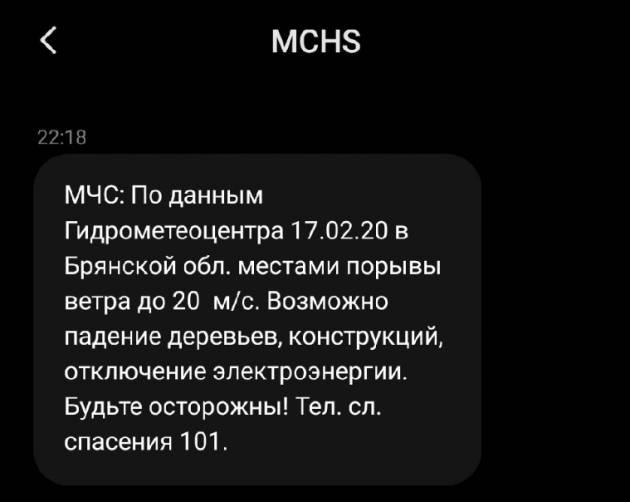 Брянское МЧС предупредило о сильном ветре через SMS