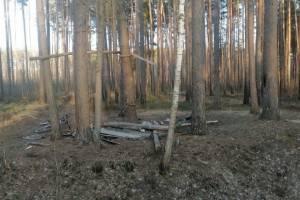 В Клинцах вандалы разгромили место отдыха