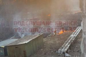 В Брянске подожгли сухую траву в микрорайоне Отрадное
